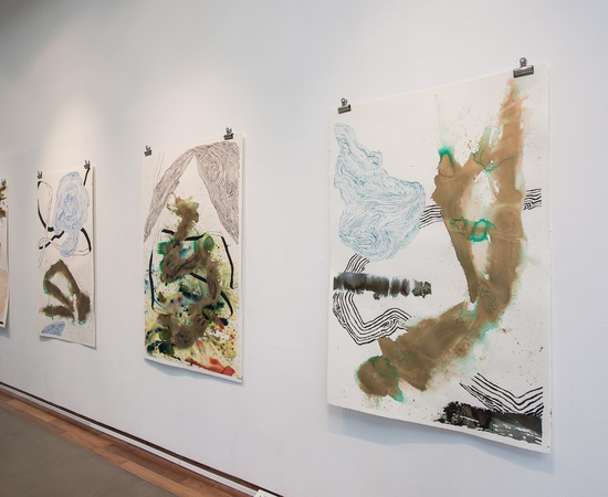<p><em>Narcisissim of Minor Differences</em>, set of 4 works on paper, installation at ICA Singapore, Praxis Space.</p>
